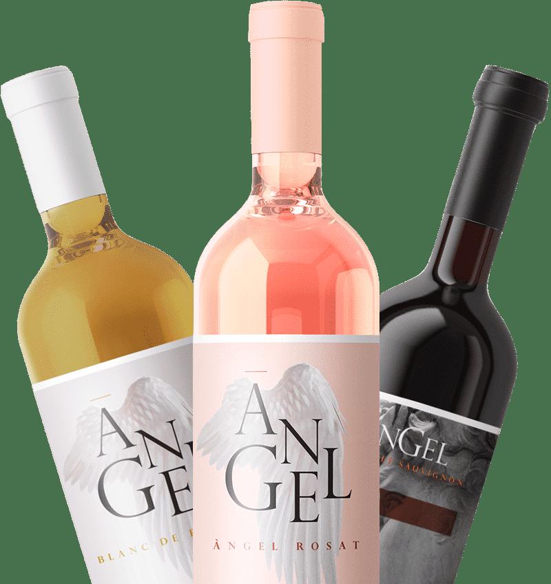 selección vinos angel